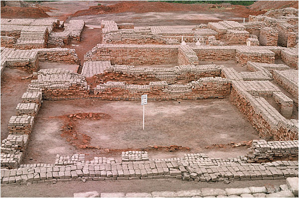 a college in mohenjo daro