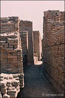 mohenjo daro an ancient indus valley metropolis