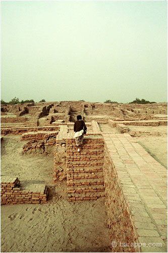 harappa and mohenjo daro pdf