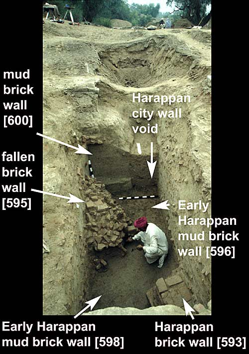 Harappa Wall Excavations