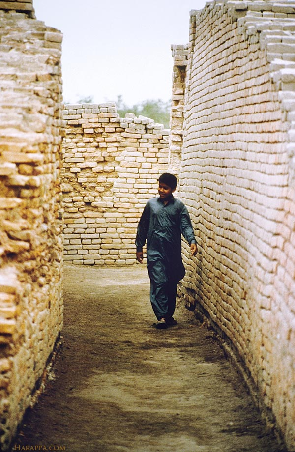 street mohenjo daro at mohenjo daro narrow streets and alleyways branch off of the major streets leading into more private neighborhoods many of the brick houses were two