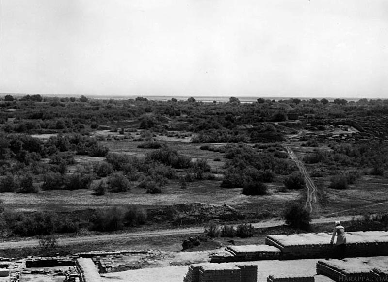 View from Stupa Mound, Mohenjo-daro