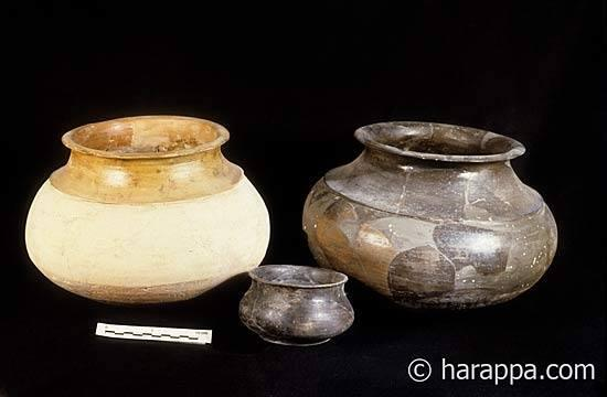 Ledge shouldered cooking pots with low neck and flaring rim. One vessel has red slip on the neck and rim, while the other is fired grey-black. A small black fired bowl is seen in the foreground. Period III, Harappan, 2300-2200 B.C.E.
