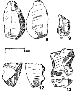 Report on the Excavation and Analysis of an Upper Acheaulean Assemblage