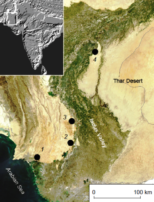 The Levallois Mousterian Assemblages of Sindh (Pakistan) and their Relations with the Middle Paleolithic of the Indian Subcontinent