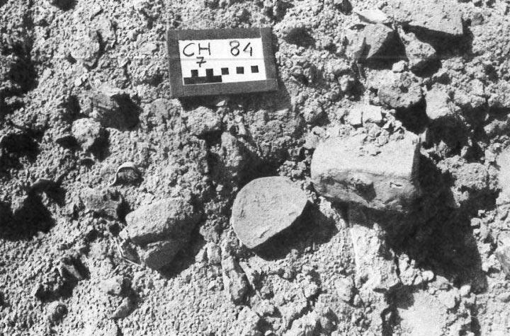 Surface Evidence of Craft Activity at Chanhu-daro