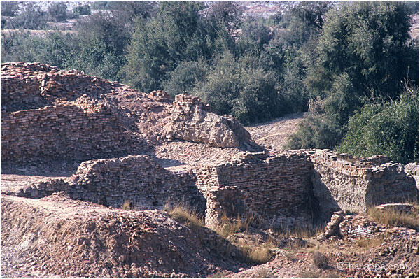 Mohenjo-daro granary and wall