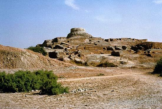 55 Years of Archaeological Research in Pakistan