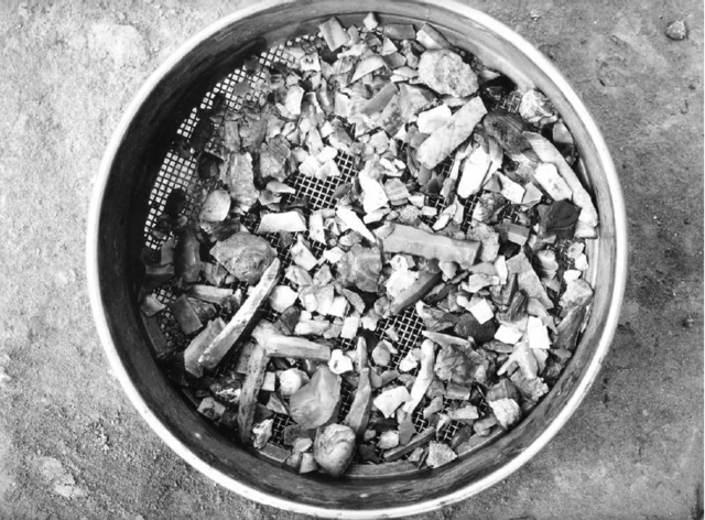 Stone debitage and tools from Mohenjo-daro