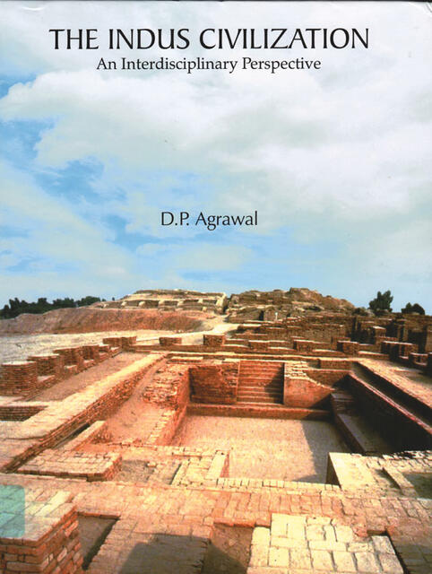 The Indus Civilization an Interdisciplinary Perspective by D.P. Agrawal