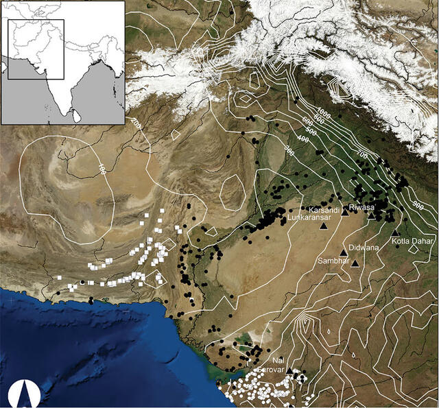 an analysis of indus civilization an ancient civilization in south asia View harappan civilization research papers  in the archaeological research of ancient south asia,  experts on the ancient indus civilization of.